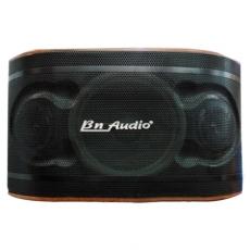 LOA BN AUDIO BN 404 II